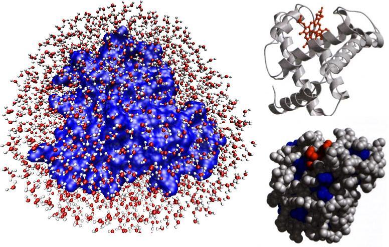 Resultado de imagen para simulación molecular