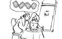 dibujo20090408_tomten_gene_codified_in_vector_pj2