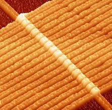17 memristores formados al cruzar nanohilos de 50 nanómetros de grosor (C) Jianhua Yang, HP Labs.