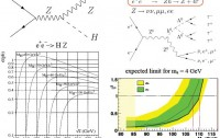 Dibujo20091114_higgs_boson_lep2_reanalysis_desintegration_in_four_tau_leptons