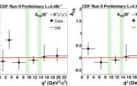 Dibujo20100114_CDF_B_meson_decays_kinematics_Angular_Analysisfor_6_and_5_bins