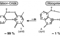 Dibujo20120217 Watson-Crick vs Hoogsteen AT hydrogen bonds