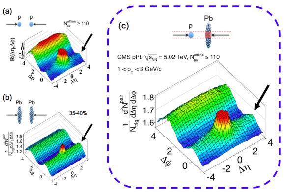 Dibujo20150727 cms- ridge - pbpb pPb collisions - lhc cern org