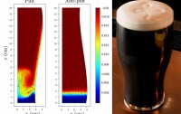 Dibujo20130205 guiness pint - comsol numerical simulation bubbly flows