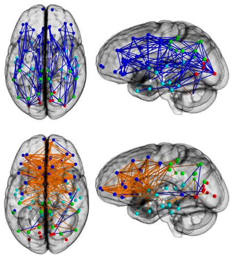 Dibujo20131207 connection-wise analysis - brain - pnas org