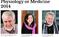 Dibujo20141006 nobel prize medicine 2014