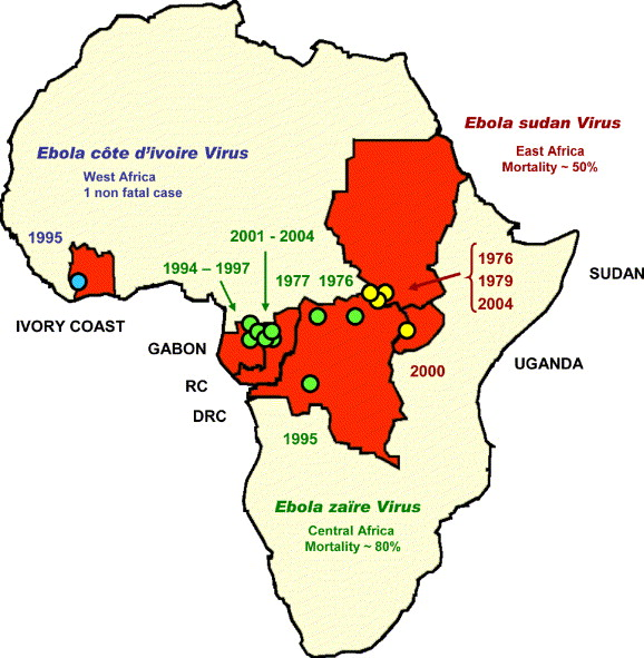 Dibujo20141012 The first recorded Ebola outbreaks - sciencedirect com