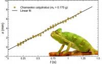 Dibujo20141126 rheological measurement mucus chameleon - arxiv org