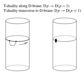 Dibujo20150811 t-duality - d-brane - hashimoto