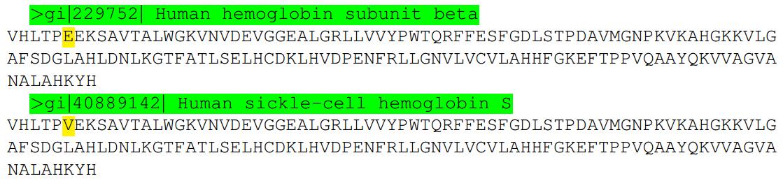 La anemia falciforme la importancia de un solo nucle tido for Definicion de beta