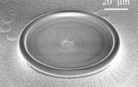Dibujo20160710 Scanning electron microscope image of the silica microtoroid