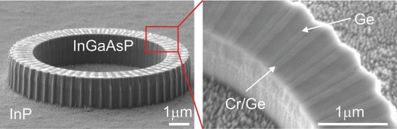 Dibujo20160730 micrograph microscience mag org