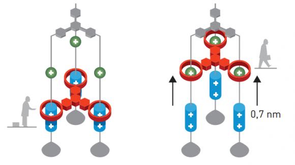 dibujo20161005-fraser-stoddart-molecular-lift-nobelprize-org