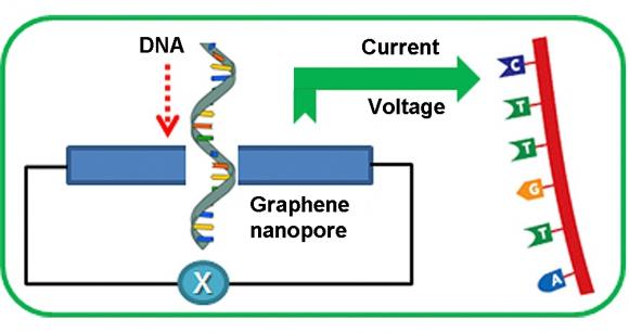 Figure 1 graphene nanopore