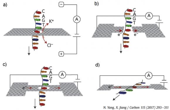Figure 2 graphene nanopore sequencing