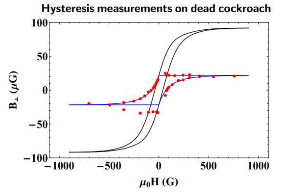 Dibujo20170213 Hysteresis measurements on dead cockroach arxiv 1702 00538
