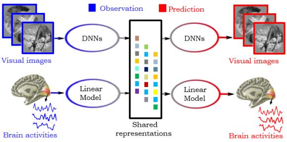 Dibujo20170508 proposed deep generative multiview framework for brain decoding ohbm aievolution com hbm 1701 abs 2074png