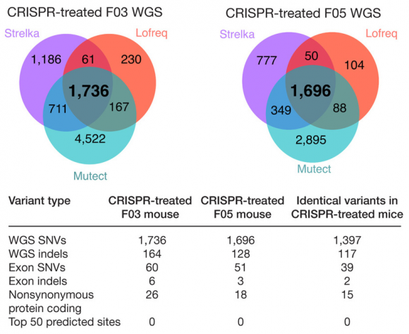 Dibujo20170602 crispr-treated mice snv indel variants nmeth 4293