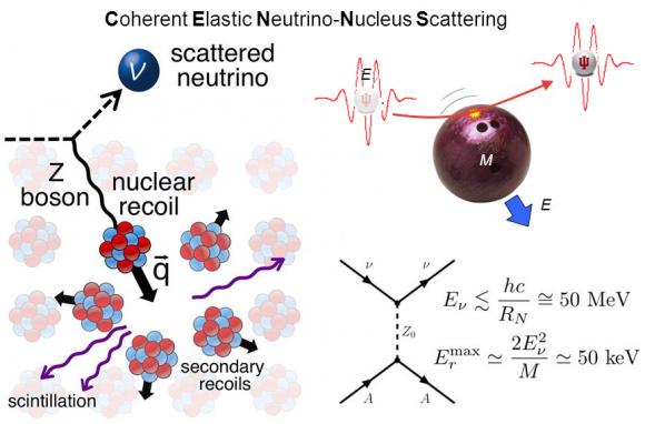 Dibujo20170804 coherent elastic neutrino-nucleus scattering sciencemag aao0990
