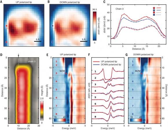 Dibujo20171110 up down spin polarization majorana fermion sciencemag 358 6364 772 F2