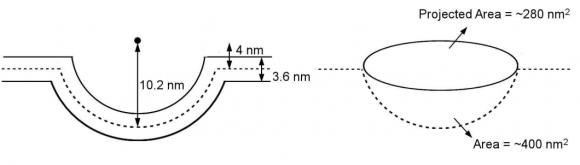 Dibujo20171227 elastic model of tension-gating in mPiezo1 elife 33660