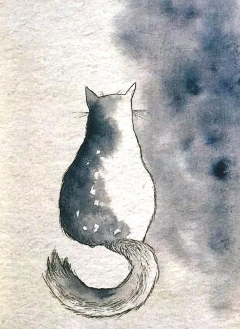 Dibujo20180218 gato maria lamprech grandio manual de linternas libros y literatura