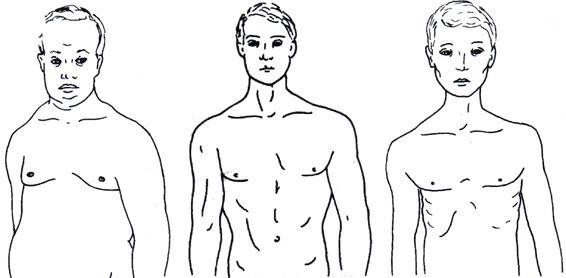 Bernat Soria y la talla femenina (cilindro, campana, diábolo) o Fernández de la Vega y la constitución masculina (pícnico, atlético, leptosomático)