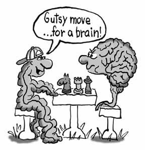 Piensa y siente nuestro estómago con nuestro segundo cerebro (o el sistema nervioso entérico)