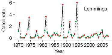 Tasa de capturas de lemmings en función del año.
