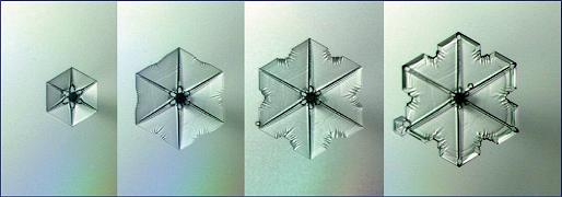 Dibujo20090508_snow_crystal_growth