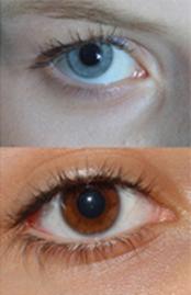 Dibujo20090509_blue_brown_eye_closeup