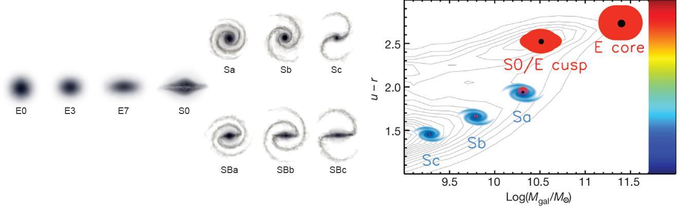 Dibujo20090713_Hubble_galaxy_classification_and_bimodality