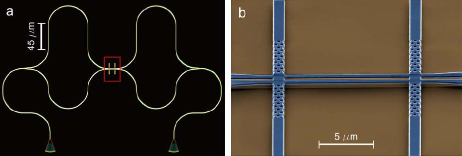 Dibujo20090806_Left_Optical_microscope_image_device_and_Right_Scanning_electron_microscope_image_suspended_coupled_waveguides_photonic_crystal_waveguide_coupler
