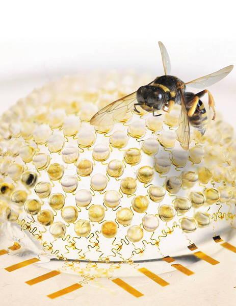 Dibujo20130506 insect-inspired visual sensor