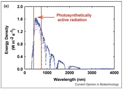 Dibujo20130519 The distributions of energy density of solar spectrum
