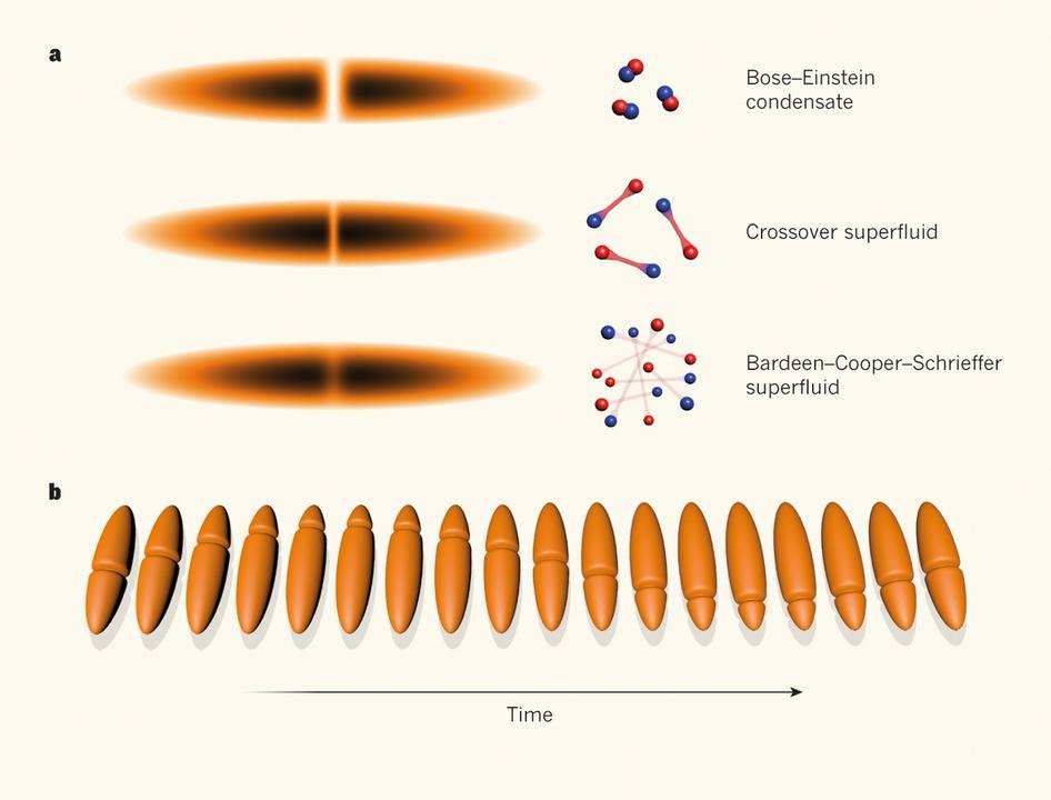 Resultado de imagen de Fluctuaciones de campos fermionicos