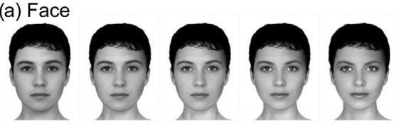 Dibujo20131114 simuli images female faces - sciencedirect com