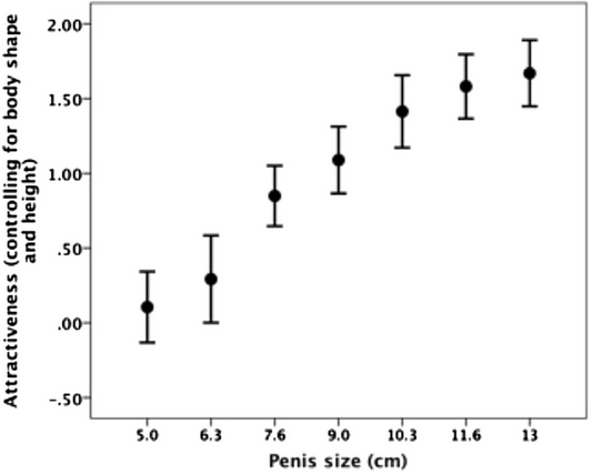 Dibujo20131204 relationship attractiveness and penis size - pnas org