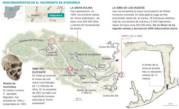 Dibujo20131207 descubrimientos en el yacimiento de atapuerca - elpais