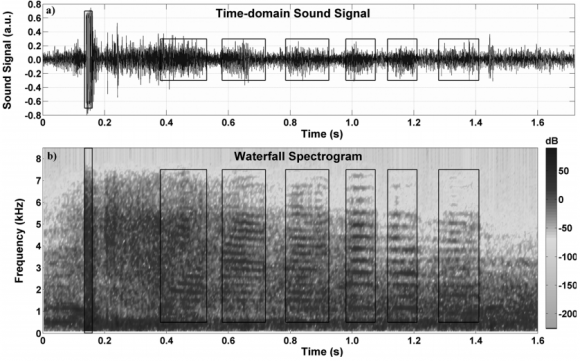 Dibujo20140127 The sound signal and the waterfall spectrogram derived using MATLAB - Am J Phys