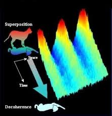 Dibujo20140127 quantum decoherence - schrodinger cat