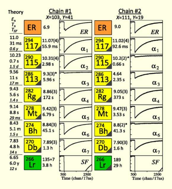 Francis en rosavientos el ununseptio el elemento 117 de la tabla dibujo20140508 ununseptium decay chain wikipedia urtaz Images