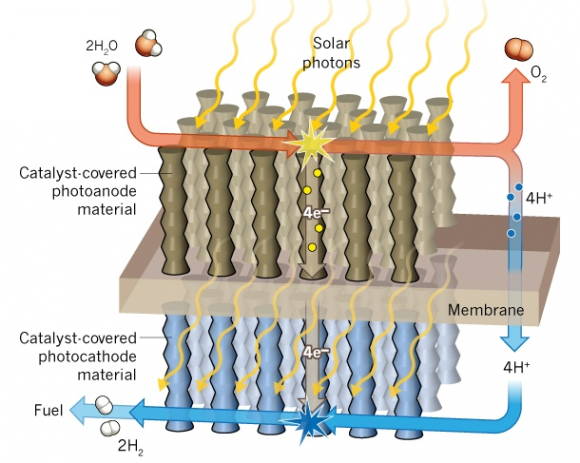 Dibujo20140605 artificial photosynthesis for splitting water into oxygen and hydrogen - nature