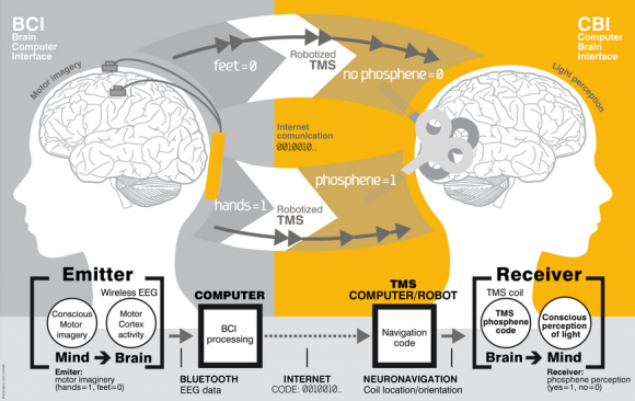 Dibujo20140921 technical scheme - brain-to-brain communication - plos one