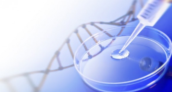 Dibujo20141103 biotecnologia - web encuentrosconlaciencia