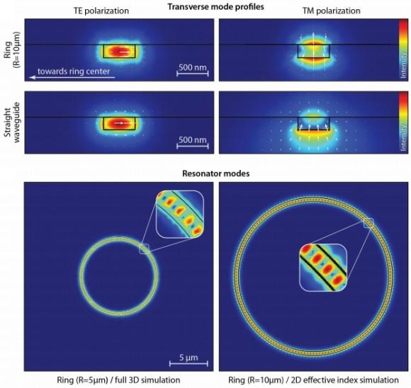 Dibujo20141106 te and tm polarization transverse mode profiles - science mag