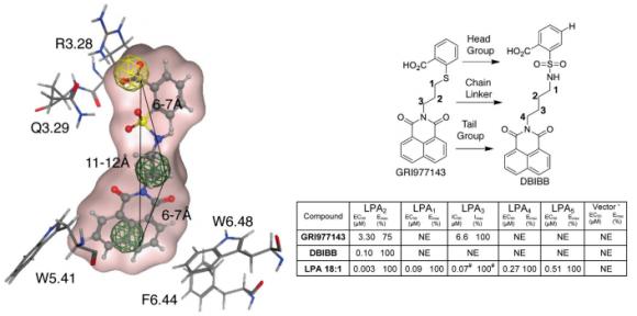 Dibujo20150124 dbibb docked into lpa2 structure-based pharmacophore - chem biol