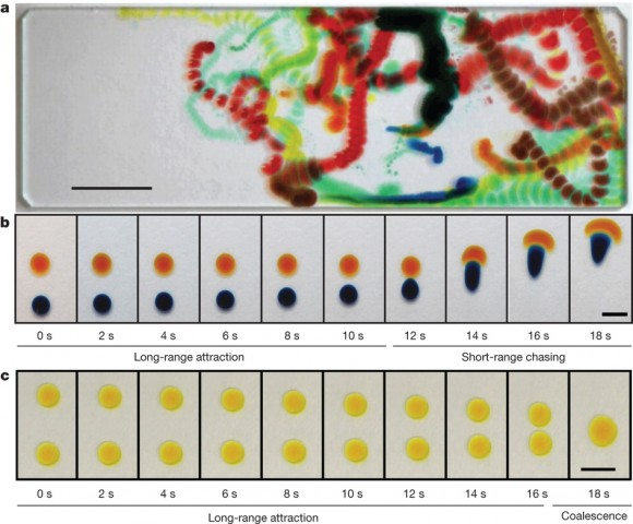 Dibujo20150312 Long-range and short-range interactions in two-component droplets - stanford - nature com