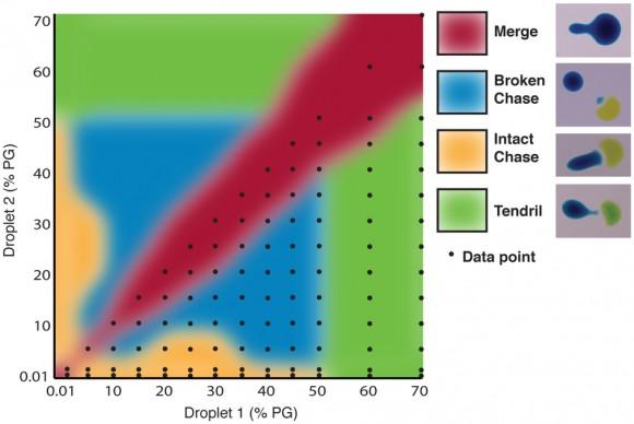 Dibujo20150312 Phase plot of the short-range droplet interactions - nature com