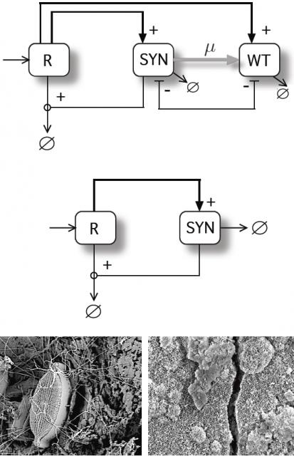 Dibujo20150324 Function-and-die Terraformation motif - arxiv - icrea